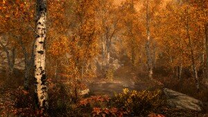 skyrim-fall-forest